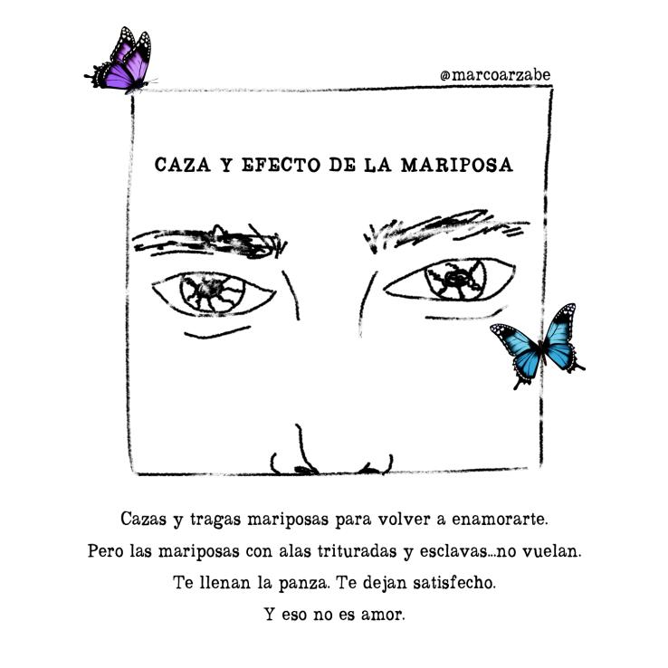 CAZA-Y-EFECTO-DE-LA-MARIPOSA